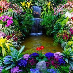Florist Victoria BC