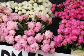 Florist Dunacan BC